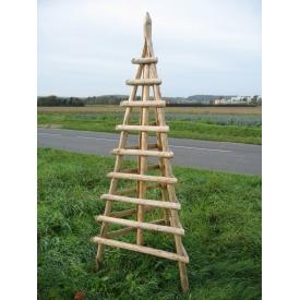 Pyramide écorcée pour plante grimpante
