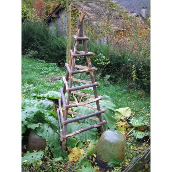 Pyramide pour plante grimpante