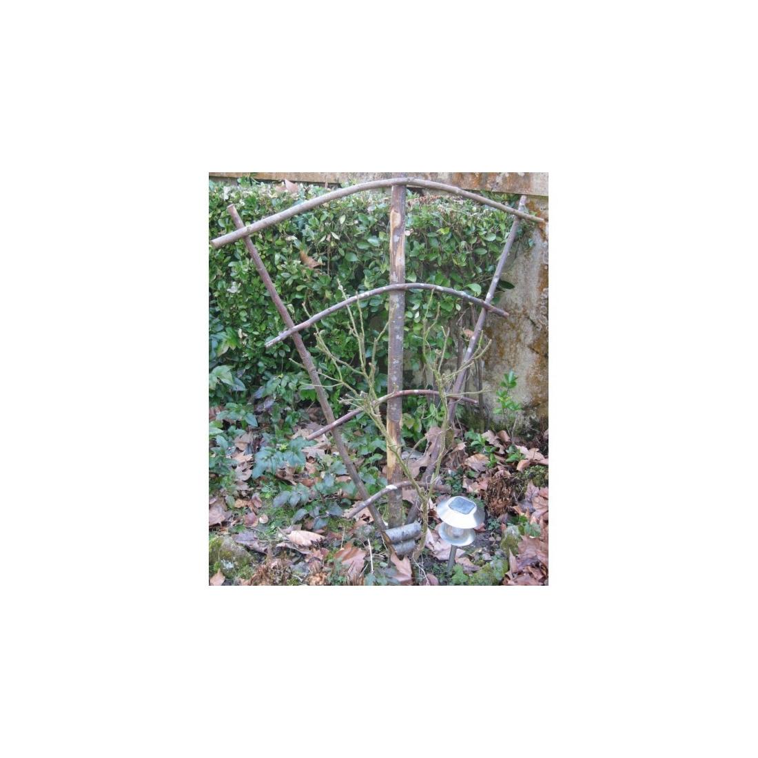 Eventail pour plante grimpante - Tuteur pour plante grimpante ...