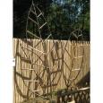 Feuille pour plante grimpante